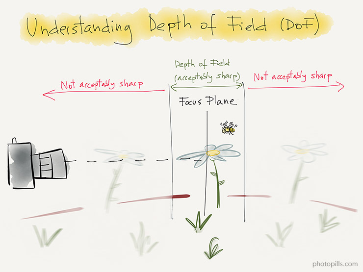 The Ultimate Photography Guide to Depth of Field (DoF